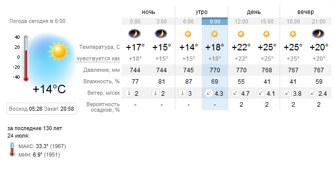 погода в кошках на завтра люблю вещи