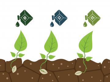 стимуляторы для растений