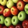 """Продам яблука зимового сорту """"Сніговий кальвіль"""" т"""