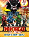 NINJAGO show