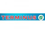 """""""TERMINUS"""" високачественные двери и окна из натуральных материалов"""