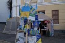 Вінниця не Київ, але й у нас тепер стоїть Євроялинка