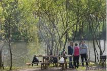ТОП 5 місць, де можна посмажити шашлик у Вінниці (Фото)