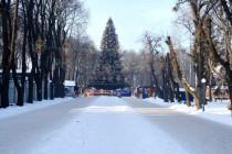 19 січня у Вінниці відбудеться закриття новорічної ялинки 2017