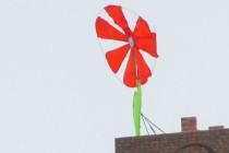 """У Вінниці будівельники дотримуються """"квіткової традиції"""" (Фото)"""