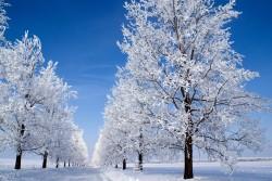 Прогноз погоды в Виннице на 30 января