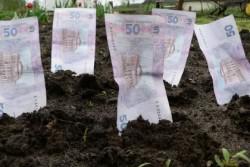На Вінниччині сплатили понад півмільярда гривень податку за землю
