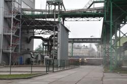 Вінницький  олійножировий комбінат планує виготовляти льняну олію