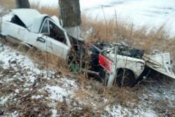 На Вінниччині авто зїхало з дороги та влетіло в дерево. Пасажири не вижили (Фото)