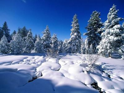 Прогноз погоды в Виннице на 3 января