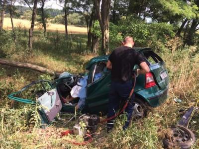 На Вінниччині легковик влетів у дерево. Водій загинув на місці (Фото)