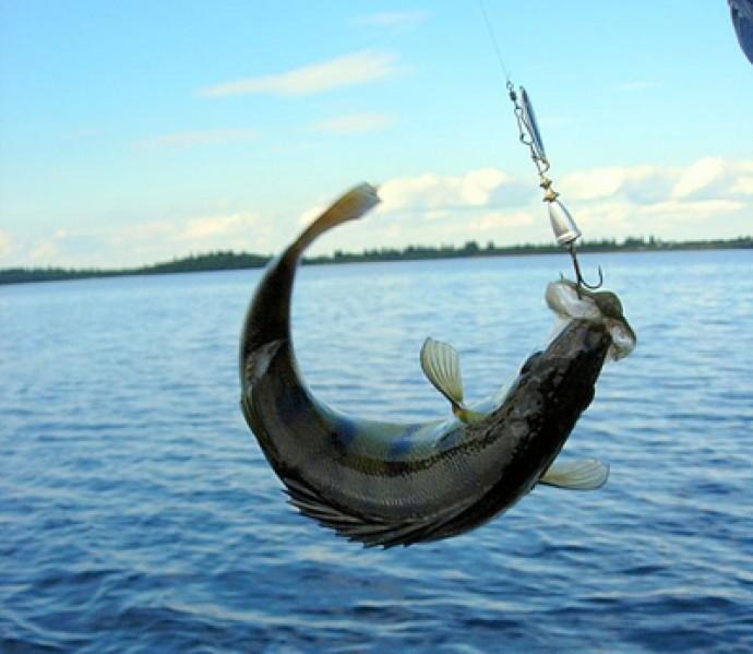 Рыбные места Винницкой области