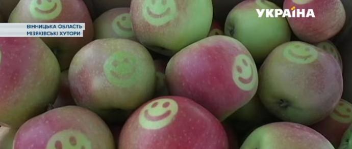 У Вінниці продають яблука з