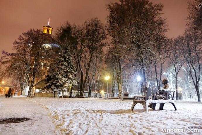 Нічний снігопад у Вінниці прикрасив передноворічне місто (Фото)