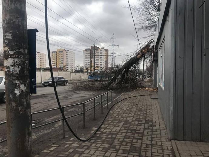 На Вінниччині буревій залишив без світла 59 населених пунктів