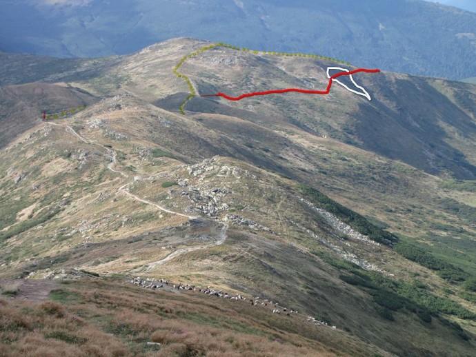 У Карпатах травмувалися туристи: гірські рятувальники нагадують про правила безпеки в горах