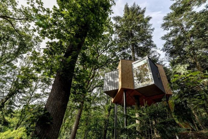 В Дании открывается отель на деревьях