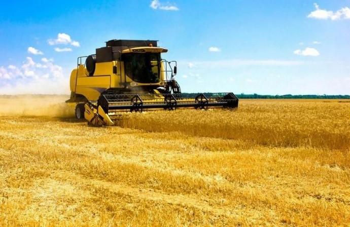 На Вінниччині завершили збирання раньої групи зернових