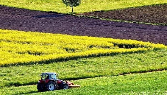 В течение 2 недель в парламенте создадут единый законопроект о рынке земли