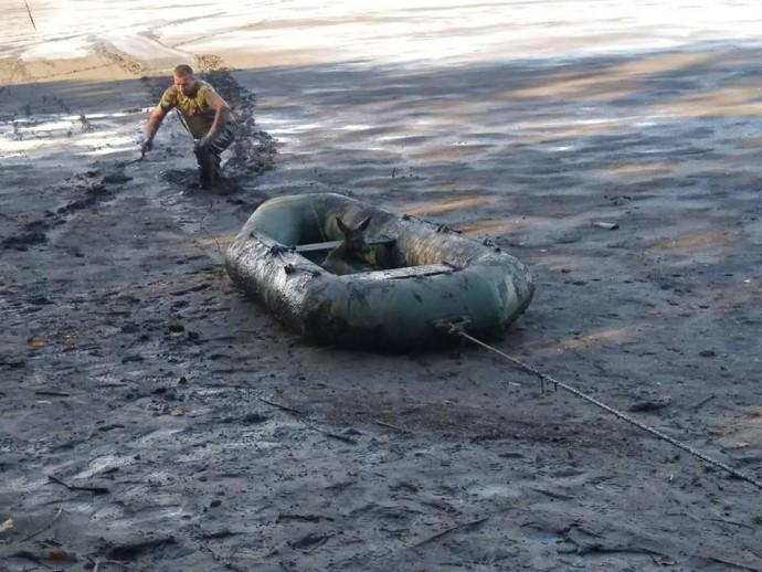 У Бершадському районі врятували козулю, яка ледь не потонула в болоті (Фото)