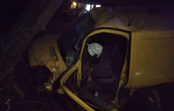 У Бершадському районі водій на Renault злетів з траси та зіткнувся з деревом (Фото)