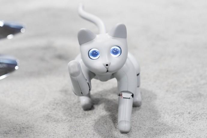 На выставке в США показали кота-робота, которого можно воспитать