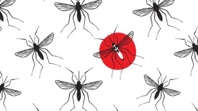 В Харькове обнаружили завезенный случай малярии