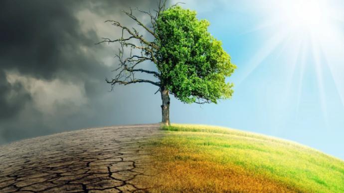 В течение 5 лет в мире может потеплеть на полтора градуса, - ООН