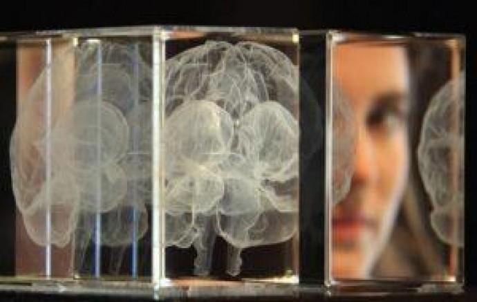 Вчені навчилися «стирати» з пам'яті неприємні спогади