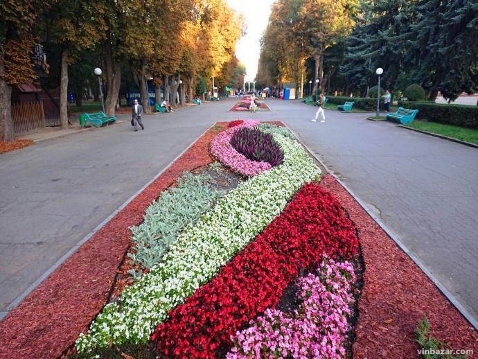 Живий килим: у Центральному парку клумби зацвіли осінніми квітами (Фото)