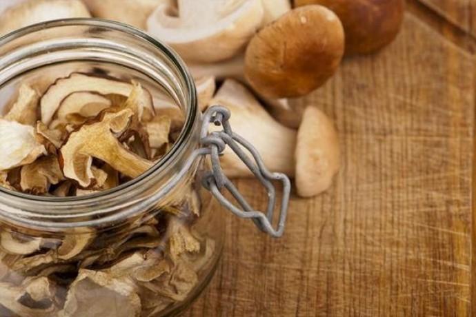 Почему грибы нужно сушить в особой сушилке?