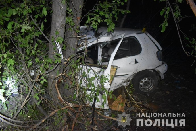На Вінниччині Volkswagen Polo злетів у кювет. Водій загинув на місці (Фото)