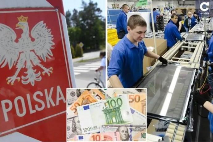 В поисках заработка: почему украинцы выбирают Польшу и нужны ли рабочие руки в других странах