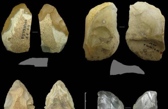 Знаряддя праці неандертальців відрізнялися різноманітністю і складністю виготовлення