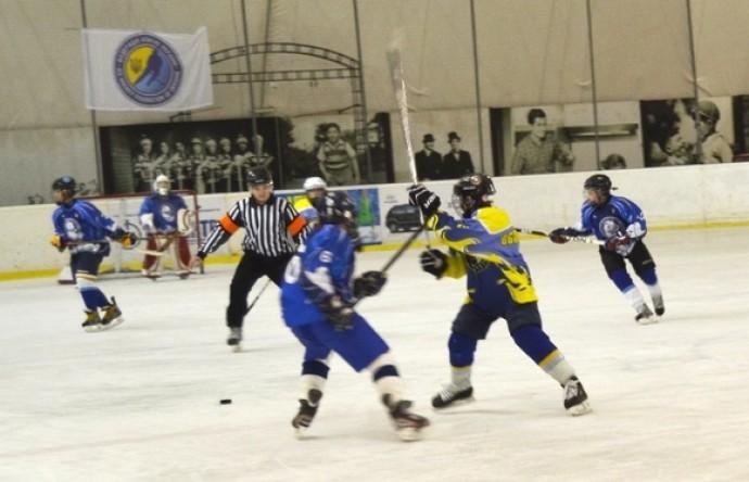 У Вінниці пройшов відкритий турнір з хокею