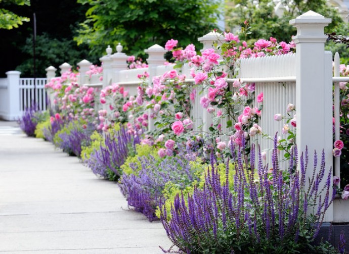 Как обустроить красивый сад без лишних трат?