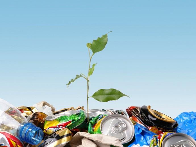 Переработка отходов как бизнес-идея