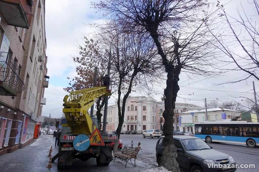 У центрі Вінниці дерева почали прикрашати гірляндами (Фото)