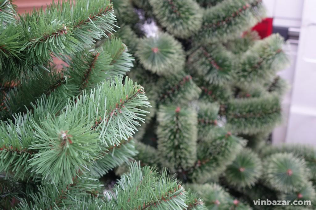 Новорічне дерево: скільки коштують ялинки у Вінниці (Фото)