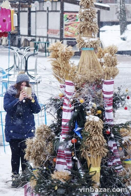 Біля Вежі встановили Різдвяного дідуха (Фото)