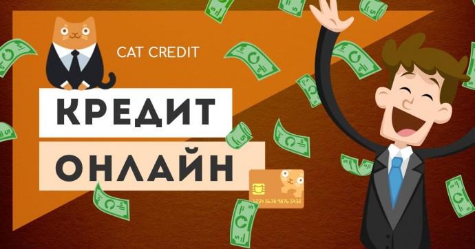 в компании CatCredit