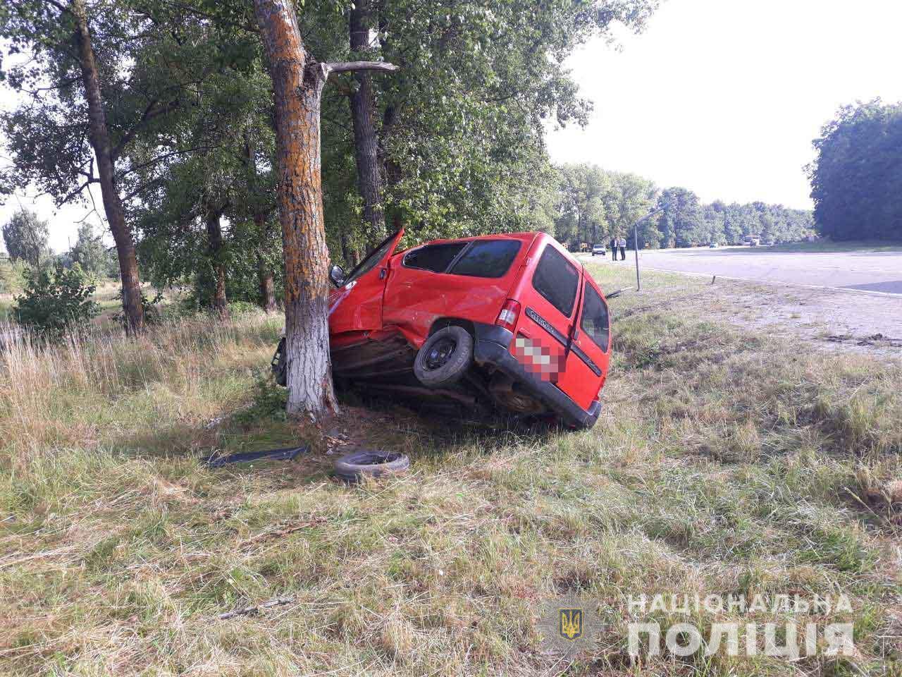 На Вінниччині автомобіль вилетів з дороги та врізався в дерево (Фото)