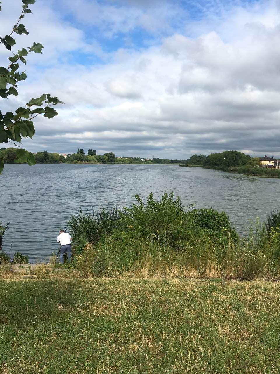 Екологи відібрали проби води у Вишенському озері через загибель риби (Фото)