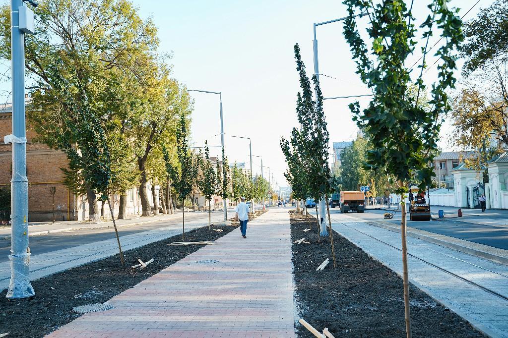 На Замостянській висадили більше 250 нових дерев (Фото)