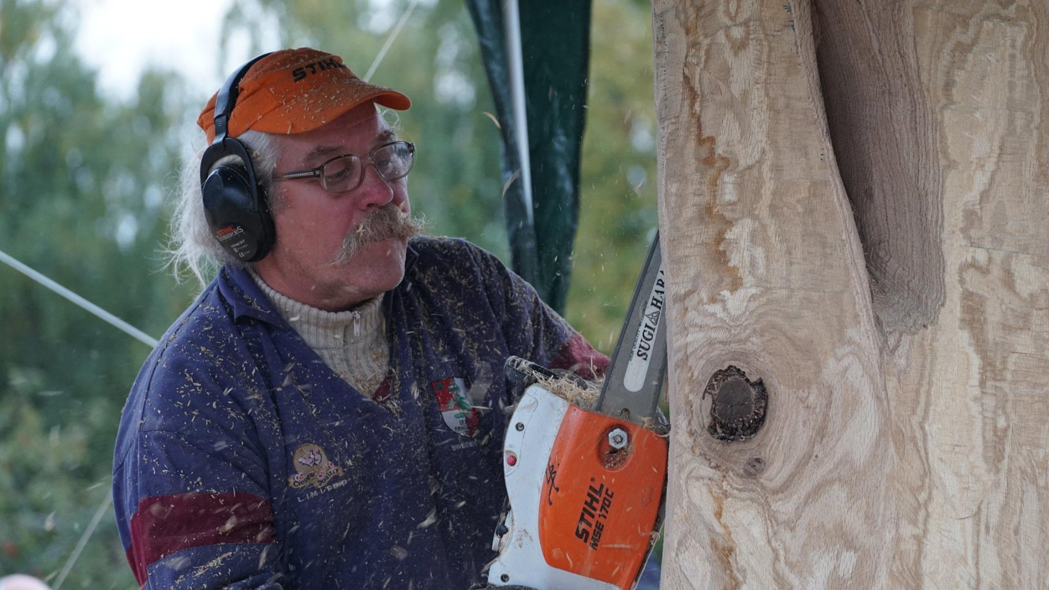 На фестивалі у Ладижині майстри вирізали скульптури з дерева (Фото)