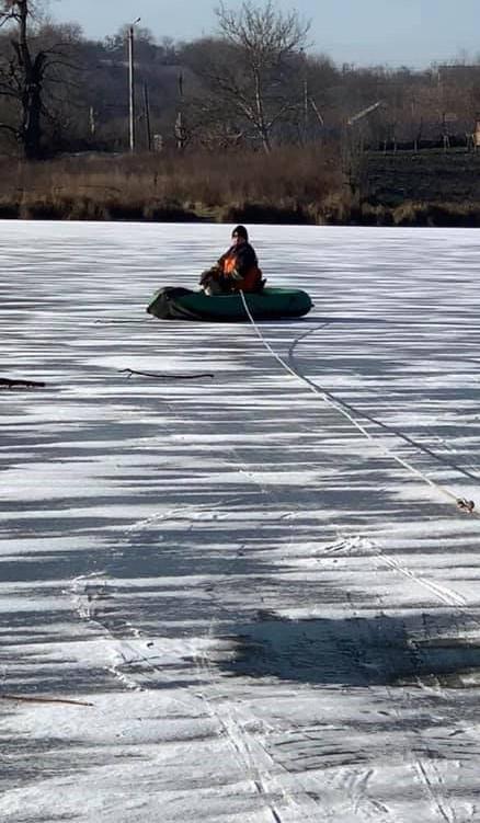 У Вороновиці врятували собаку з замерзлої водойми (Фото)