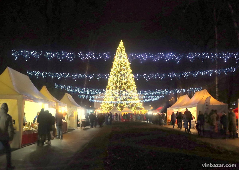 Перший день різдвяного Food Fest: чим ласують вінничани на фестивалі біля ялинки (Фото)
