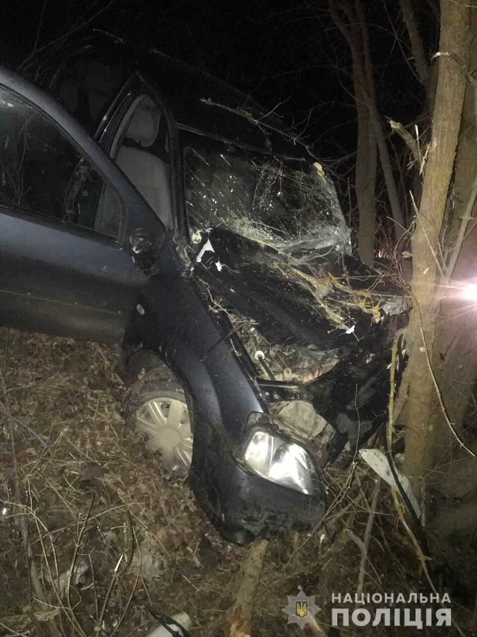 У Барському районі Dacia Logan з'їхав у кювет та зіткнувся з деревом (Фото)