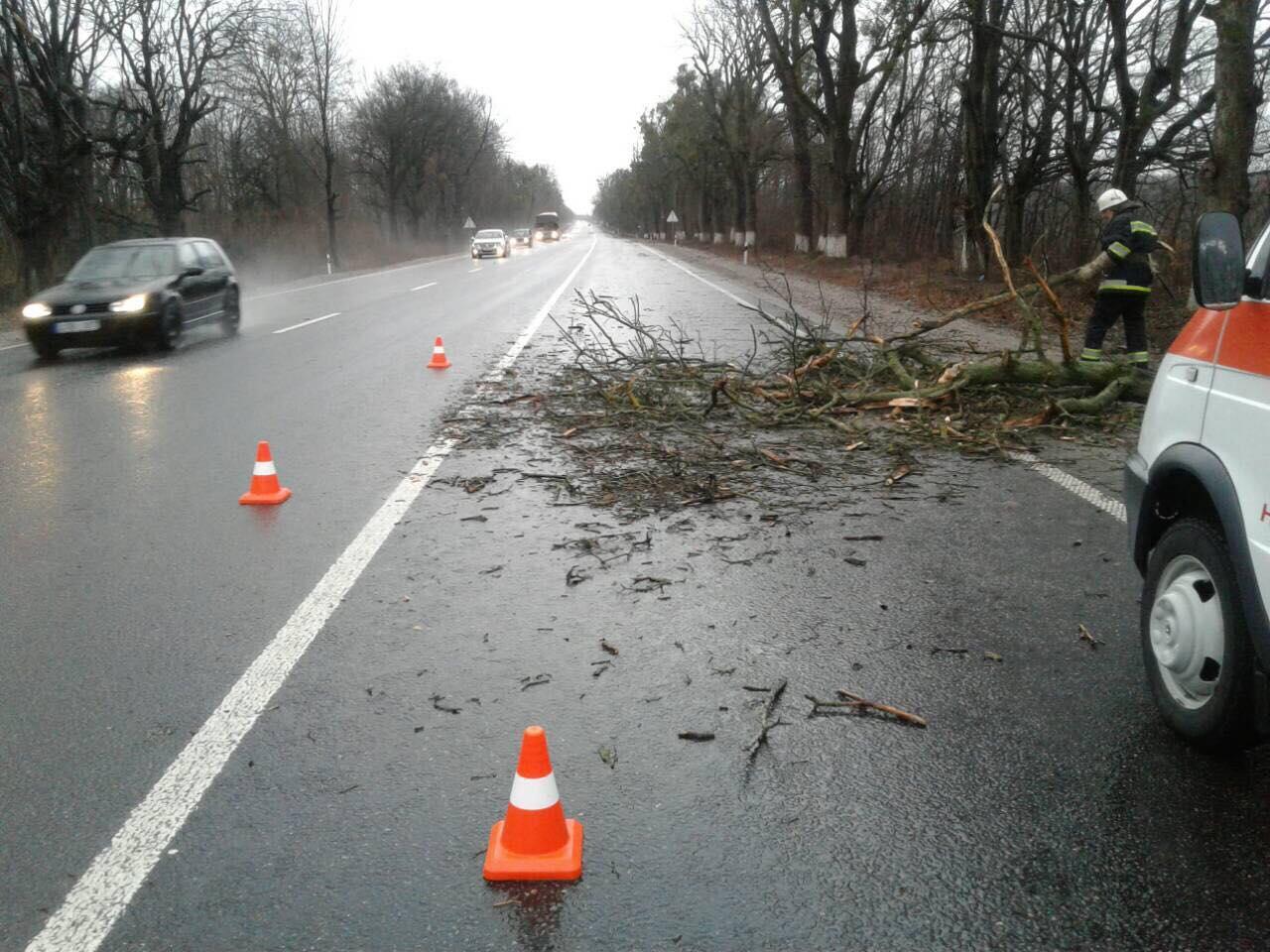 На Вінничини штормовий вітер повалив дерева та зірвав покрівлю з будинків (Фото)