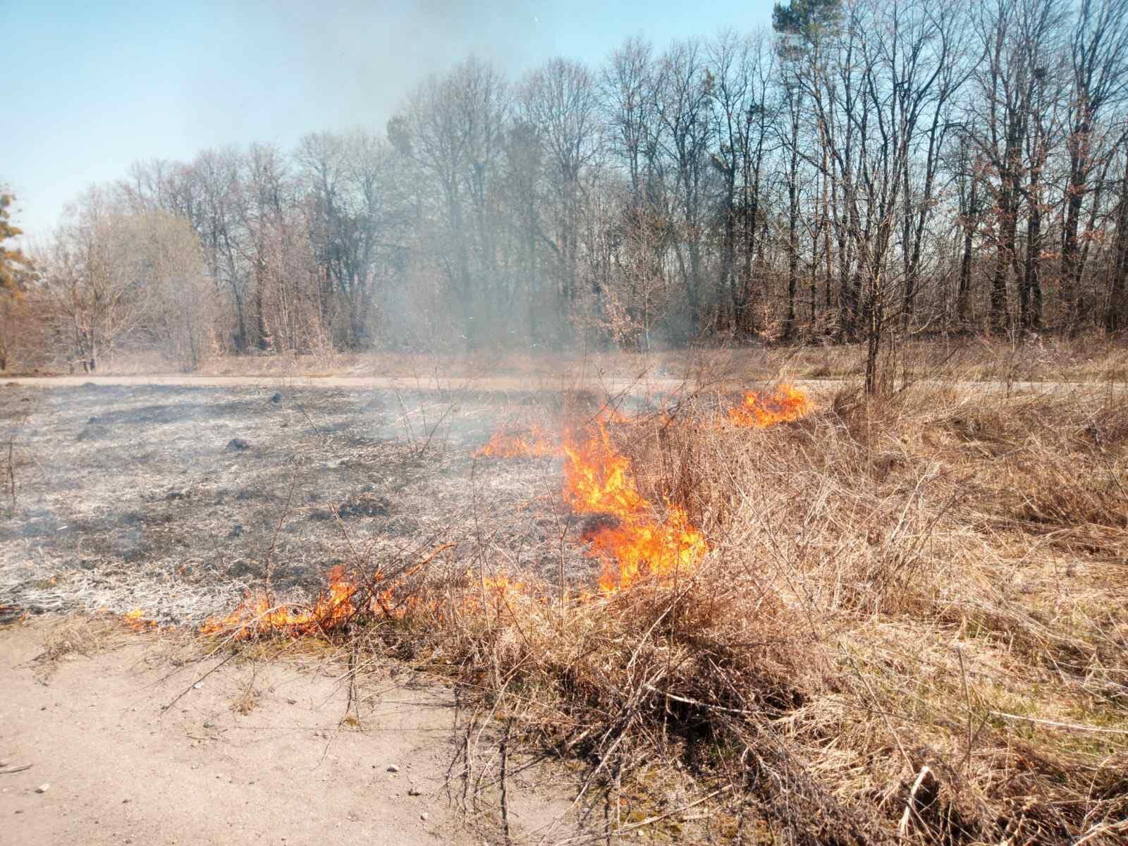 У Тиврівському районі через спалювання сухої трави загорівся ангар (Фото)